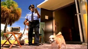 """Baha Men, """"Who Let the Dogs Out?"""""""